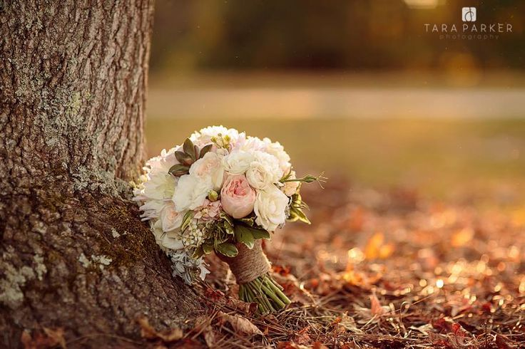 Flowers: Tre Bella / Location: The Oaks at Salem / Planner: Sally Oakley / Photographer: Tara Parker Photography