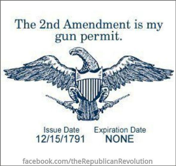 The 2nd Amendment is my gun permit
