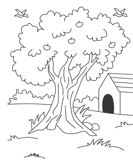 tree house colouring pages