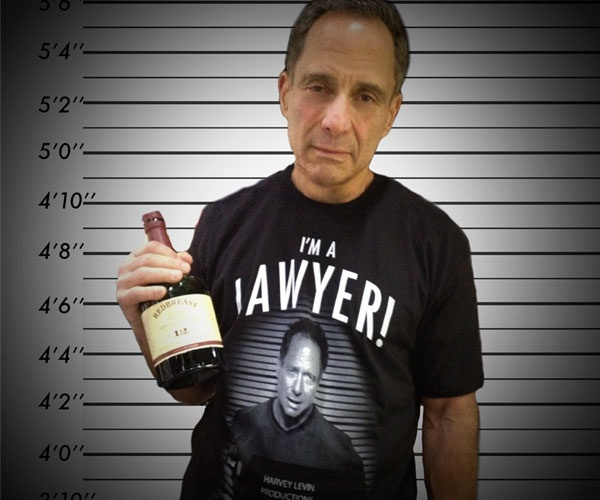 Image result for harvey levin i'm a lawyer