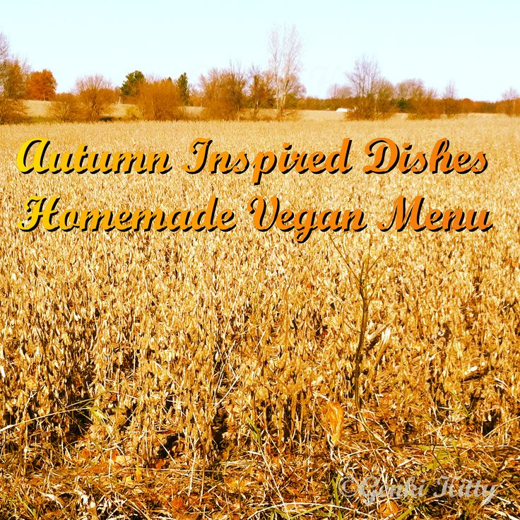 Autumn Inspired Dishes in this Vegan Weekly Menu.