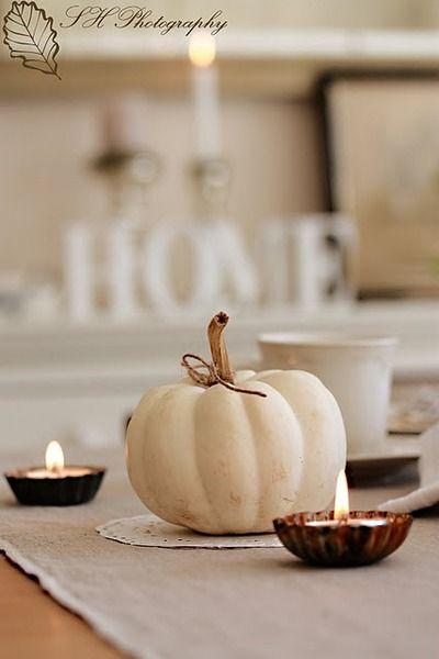 White pumpkin.  Love tart tins for tea lights.