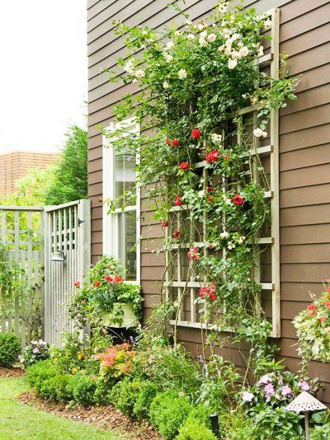 Idee creative per realizzare un pergolato guida giardino - Archi per giardino ...