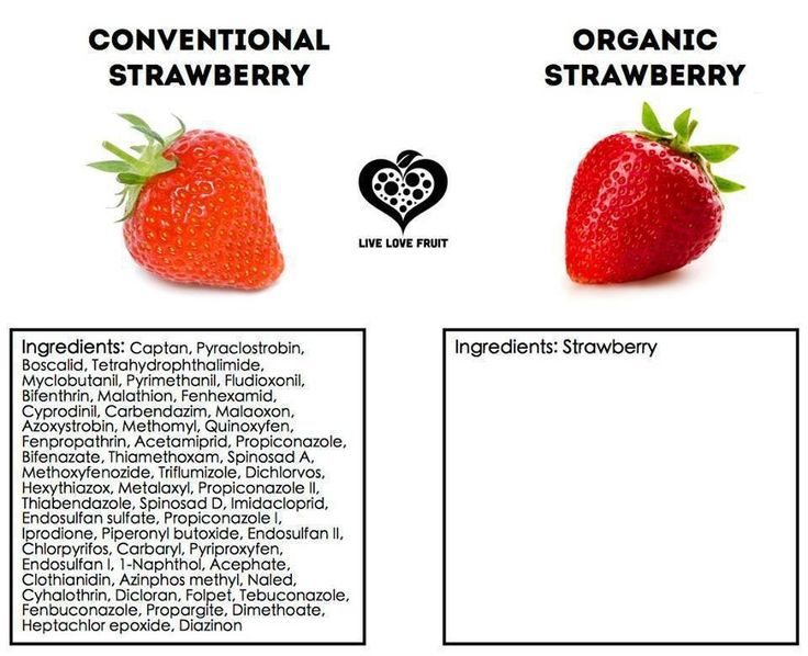 Tips to shop organically, sustainably, and more humane // Eat Real Live Well