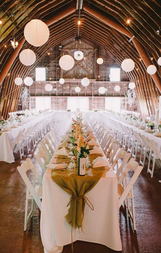 40020a98e Dress Barn Wedding Dresses. via the blue dress barn quot the ...