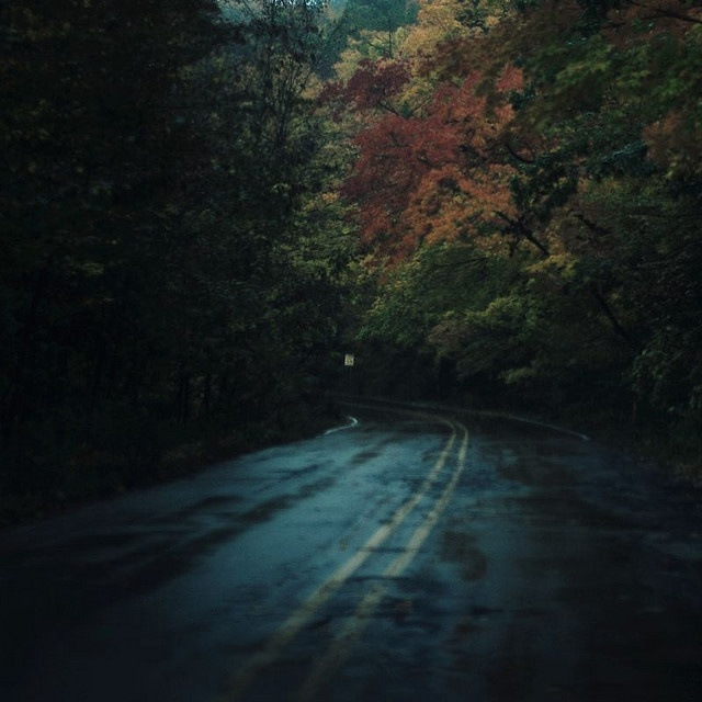 early morning autumn drives