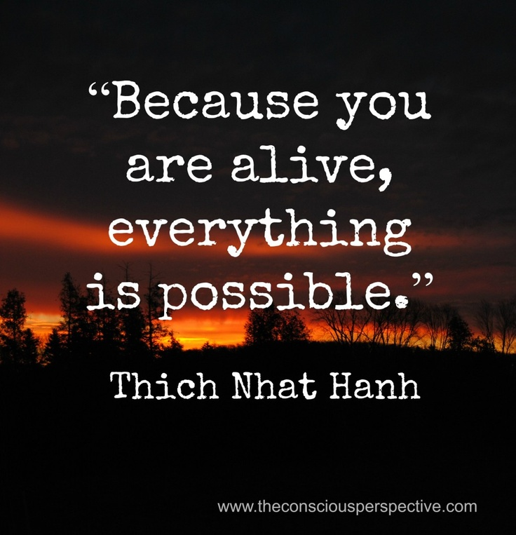 One of my favorite minds:   Thich Nhat Hanh Quote