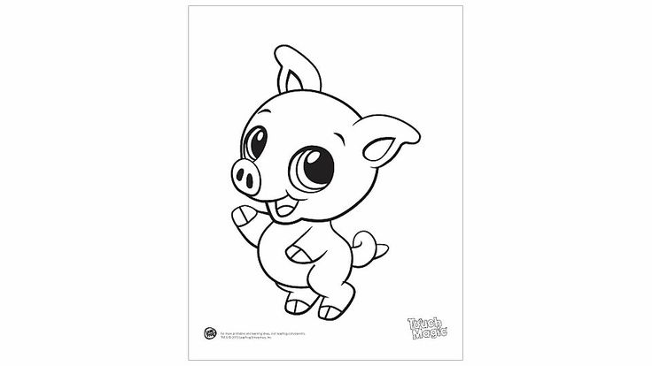 only baby pig colouring