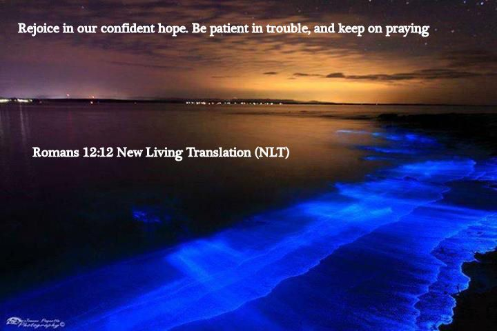 Romans 12.12 New Living Translation (NLT)