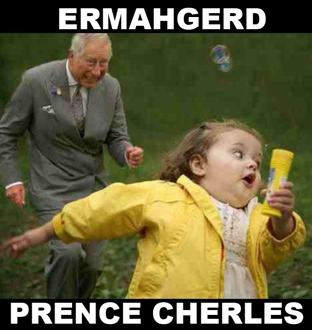 ermahgerd girl - I couldn't stop laughing!