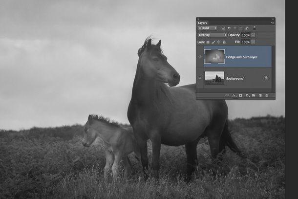 Как увеличить детализацию фотографии