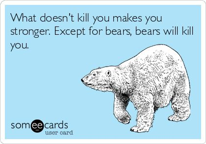What doesn't kill you makes you stronger. Except for bears, bears will kill you.