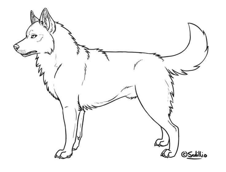 alaskan husky coloring pages husky dog coloring pages alaskan