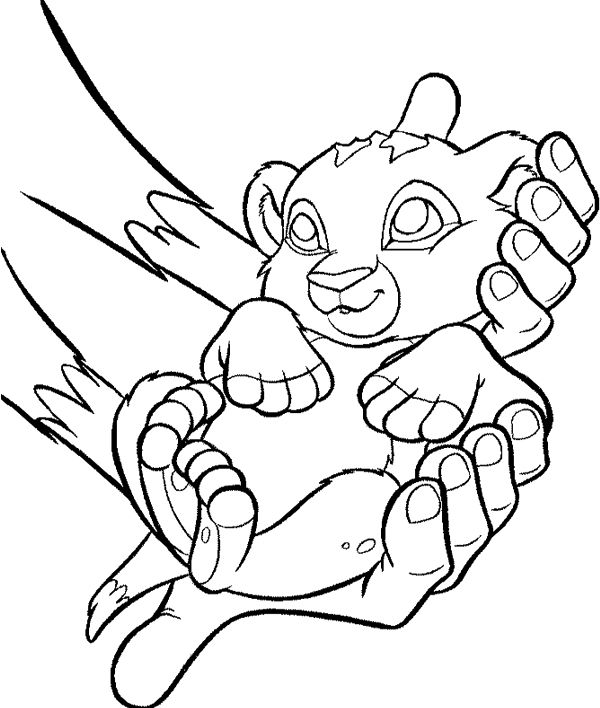 baby lion in engender coloring pages