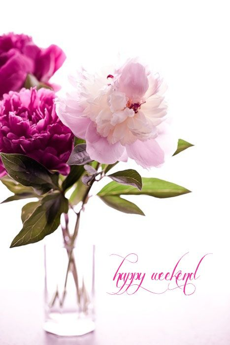 Happy weekend to all my followers!