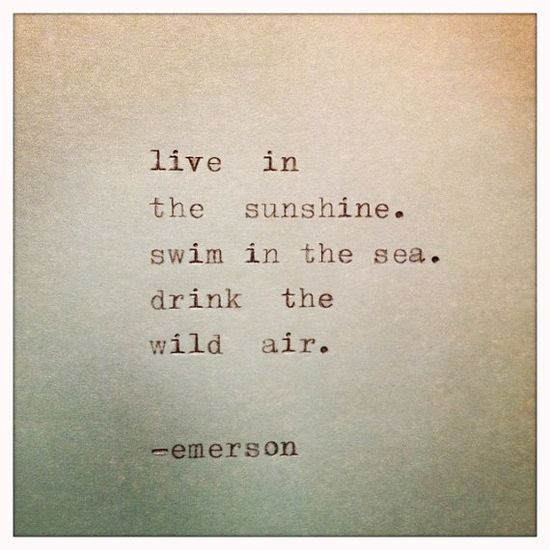 live in the sunshine swim in the sea quote - Google Search