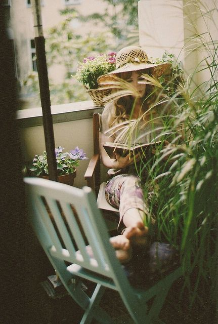 One of our guests, was photographed by © MARGUERITE GISELE. She has been in hiding all day..............