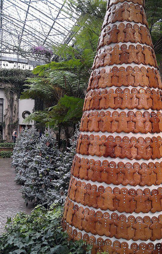 Longwood Gardens (USA) / MERRY CHRISTMAS . Обсуждение на LiveInternet - Российский Сервис Онлайн-Дневников