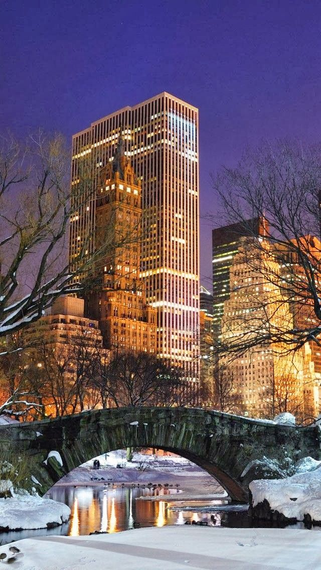 New York City at Night From Central Park in the snow.