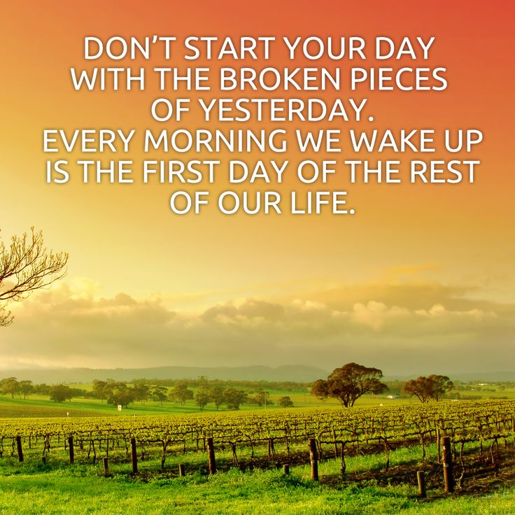 Its A New Day Quotes. QuotesGram