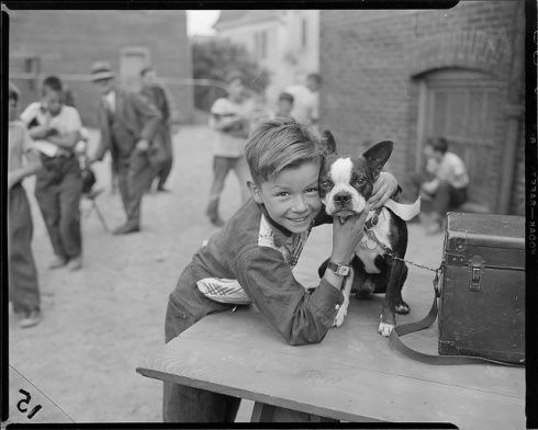 Boy with a Boston terrier.