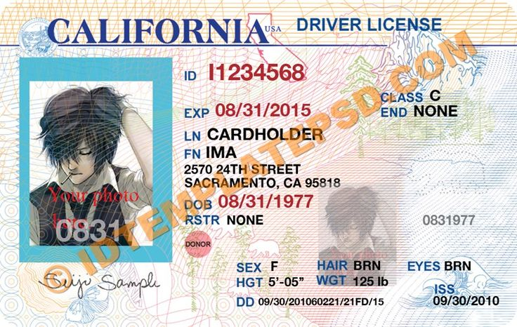 Florida drivers license and make your on pinterest