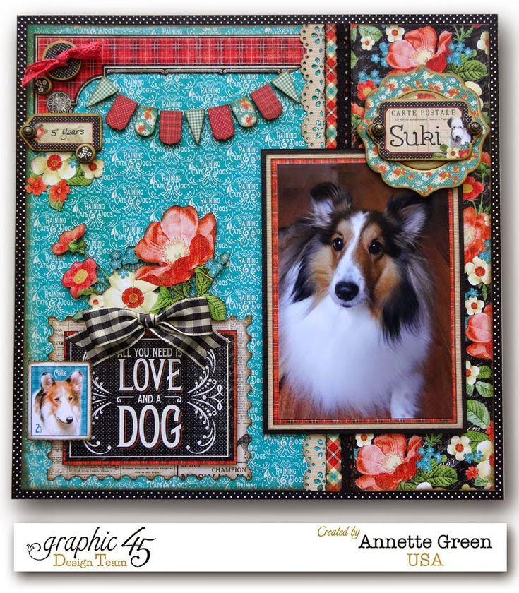 12 x 12 Raining Cats & Dogs layout by Annette Green.