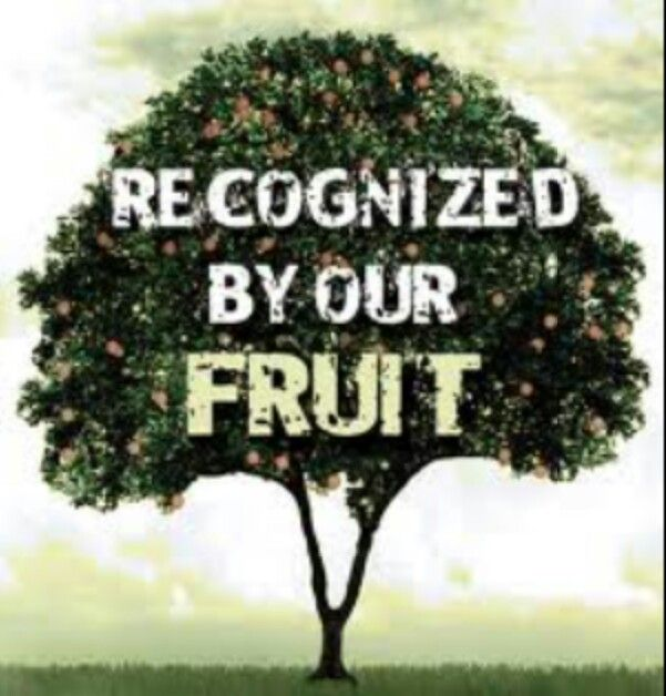 Image result for law bearing fruit