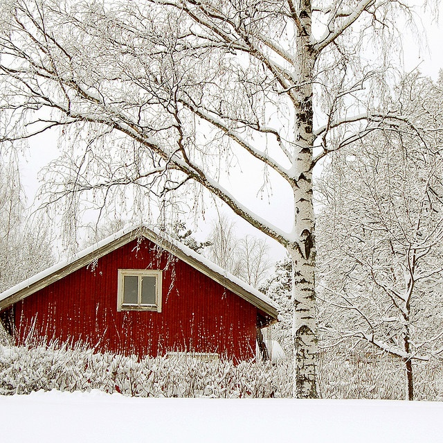 rintamamiestalo, punainen, red wooden house, Finland, suomi