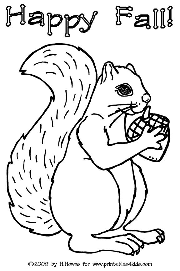 printable squirrel coloring pages cooloring com