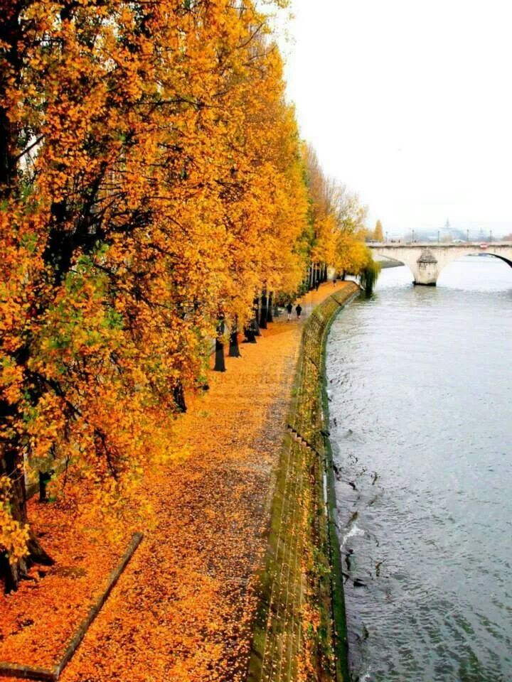 Go back to Paris in the fall, walk along the Seine. sigh