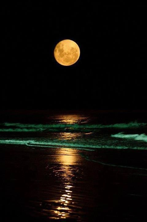 The ocean at night is one of the most beautiful things in the world.