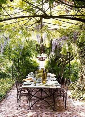 wisteria setting.. this is stunning