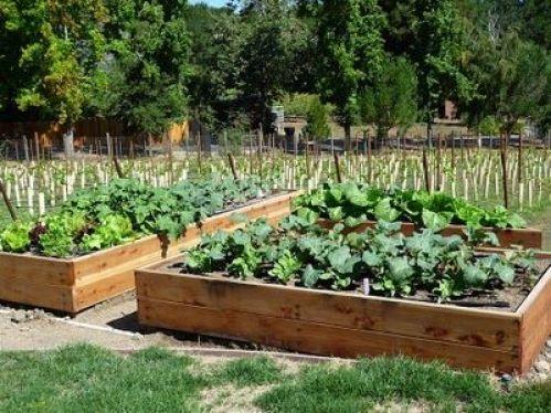 I letti in rilievo sono molto utilizzati dai giardinieri che desiderano controllare la qualità del suolo differenziando la tipologia di terreno a seconda della specie di impianto ed estendere la stagione di crescita degli ortaggi