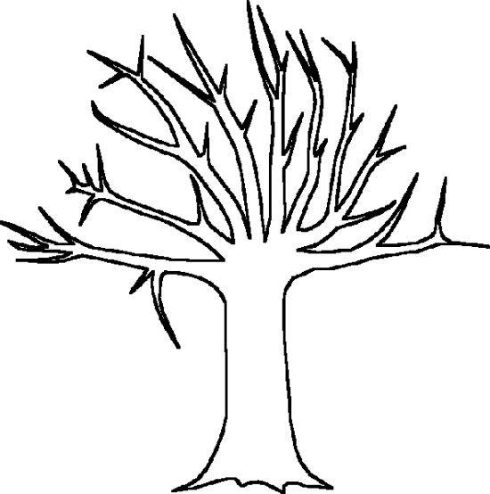 big tree without leaves coloring page tree pinterest