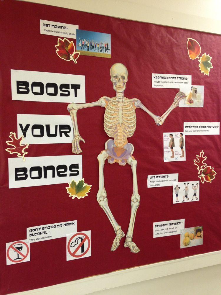 School Nurse Ideas On Pinterest Nurse Bulletin Board