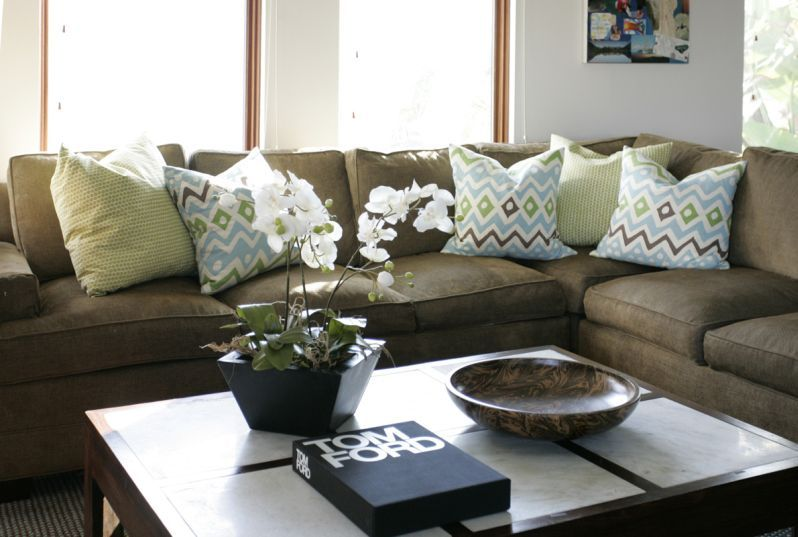 Living Room Color Schemes Olive Green Couch Zion Star
