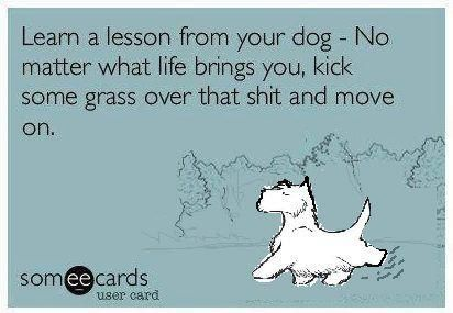 Learn a lesson from your dog.