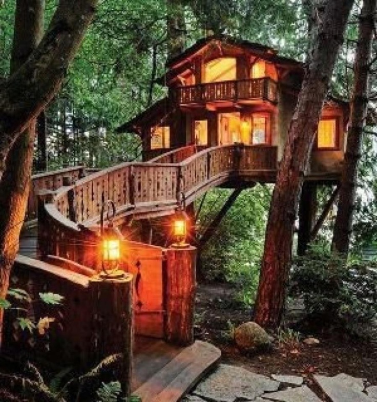 treehouse tree house writing den author's retreat