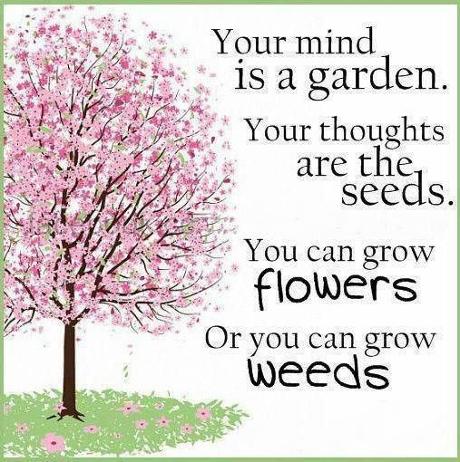 Your mind is a garden  - Pinned on behalf of Pink Pad, the women's health mobile app with the built-in community