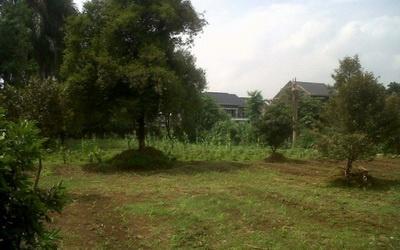 bagian belakang tanah, jual tanah di jepara, jual tanah di pecangaan jepara strategis, tanah untuk gudang furniture jepara