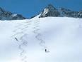 Fresh Powder Snow