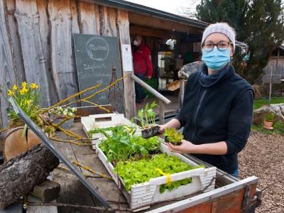 Kreis Ebersberg: Junges Gemüse und neue Perspektiven auf dem Hof