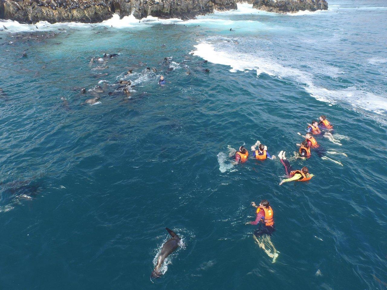 Islas Palomino (Callao) - 2020 All You Need to Know BEFORE You Go (with Photos) - Tripadvisor