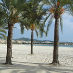 Alcudia beach in winter