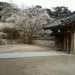 Bulkooksa Temple
