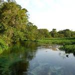 Pantanal - Brasilien