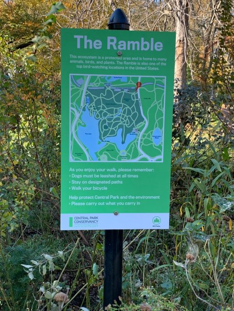 The Ramble (New York City) - 2020 All You Need to Know Before You ...