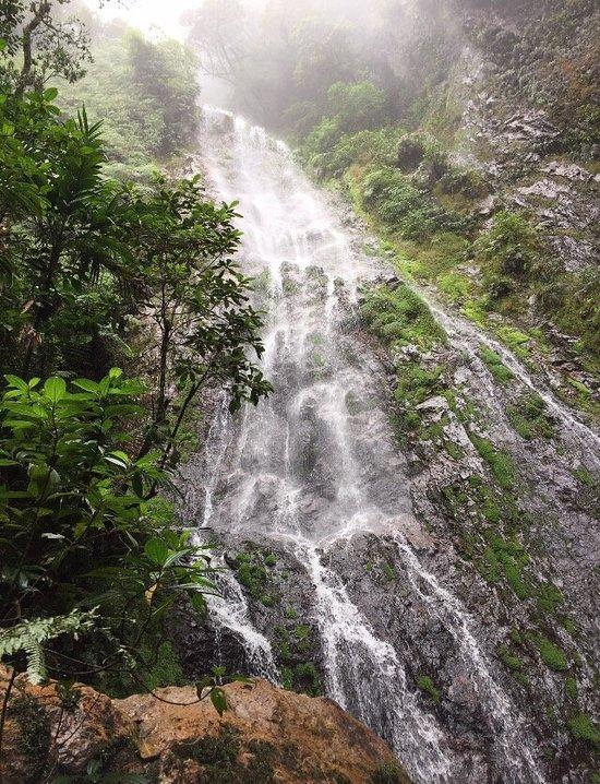 Parque Nacional La Tigra (Tegucigalpa) - 2020 Qué saber antes de ...