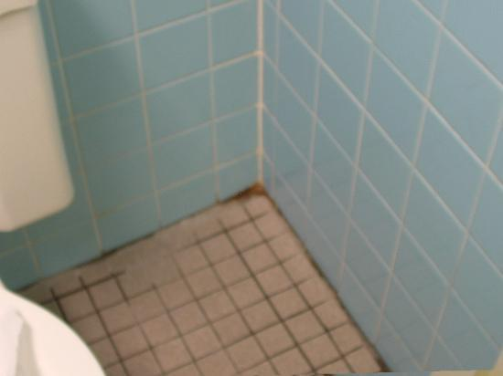 dirty floor and mildew (bathroom) - picture of days inn st. louis